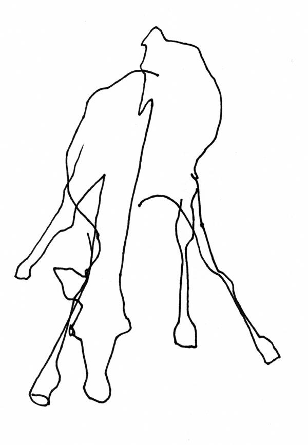 Contour Line Drawing Animal : Assignment blind contour giraffes