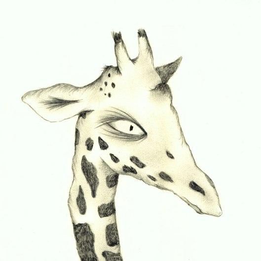 giraffepencildk