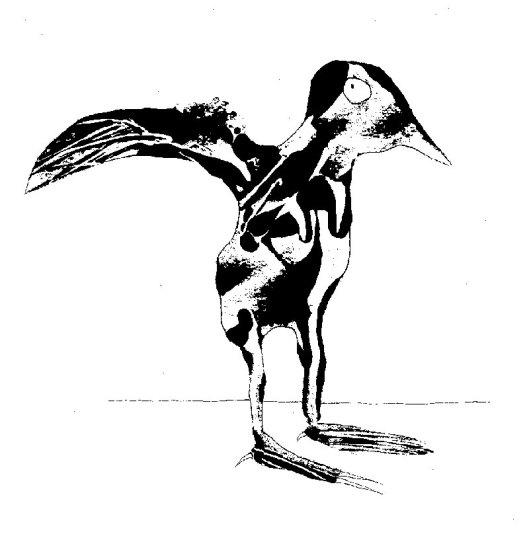 bwbirdprint