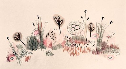 pinkmeadow