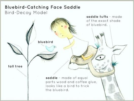 bluebirdfacesaddle