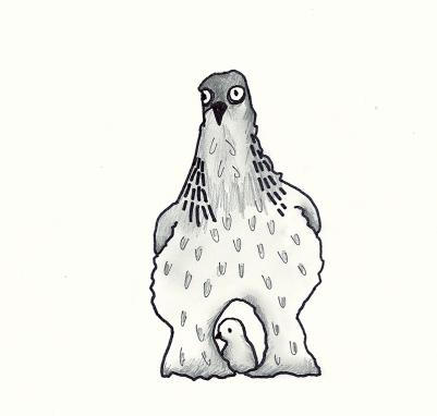 chicks (2)