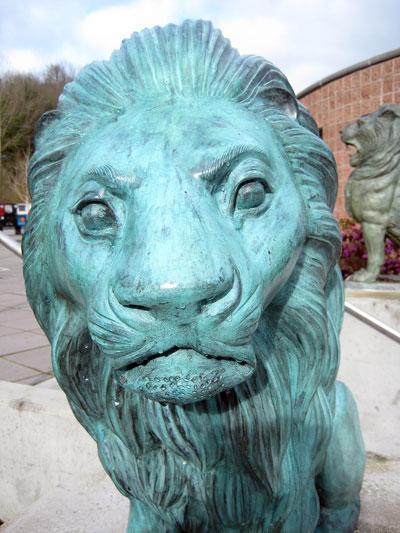 lionstep1